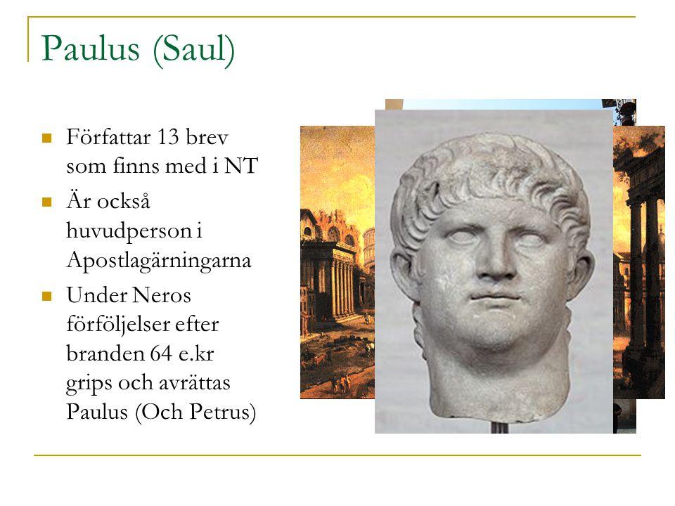 Paulus (Saul)  Författar 13 brev som finns med i NT  Är också huvudperson i Apostlagärningarna  Under Neros förföljelser efter branden 64 e.kr grip