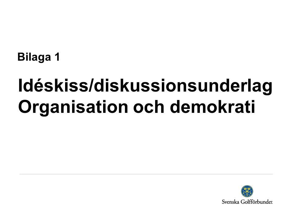 Bilaga 1 Idéskiss/diskussionsunderlag Organisation och demokrati