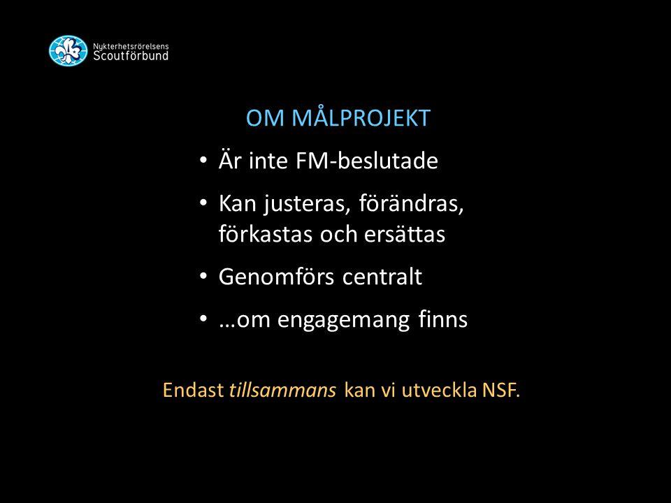 OM MÅLPROJEKT • Är inte FM-beslutade • Kan justeras, förändras, förkastas och ersättas • Genomförs centralt • …om engagemang finns Endast tillsammans kan vi utveckla NSF.