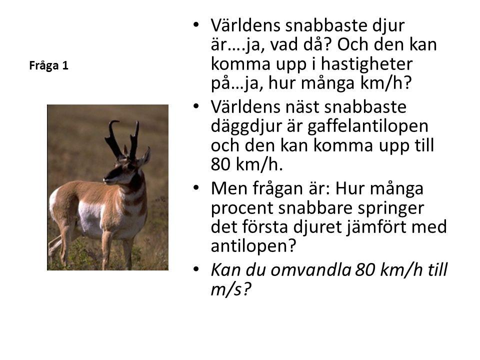 Fråga 1 • Världens snabbaste djur är….ja, vad då? Och den kan komma upp i hastigheter på…ja, hur många km/h? • Världens näst snabbaste däggdjur är gaf