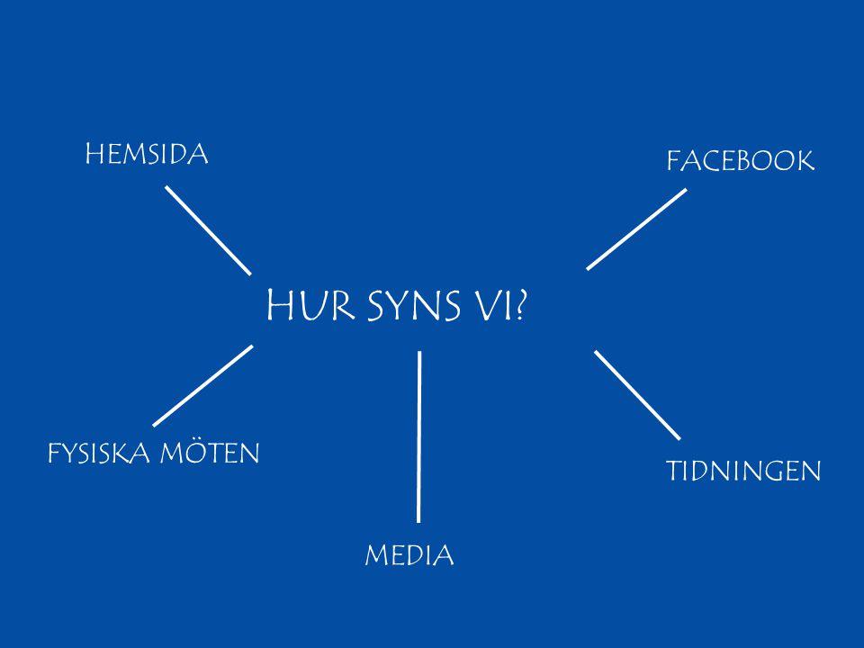 HUR SYNS VI? HEMSIDA TIDNINGEN FYSISKA MÖTEN FACEBOOK MEDIA