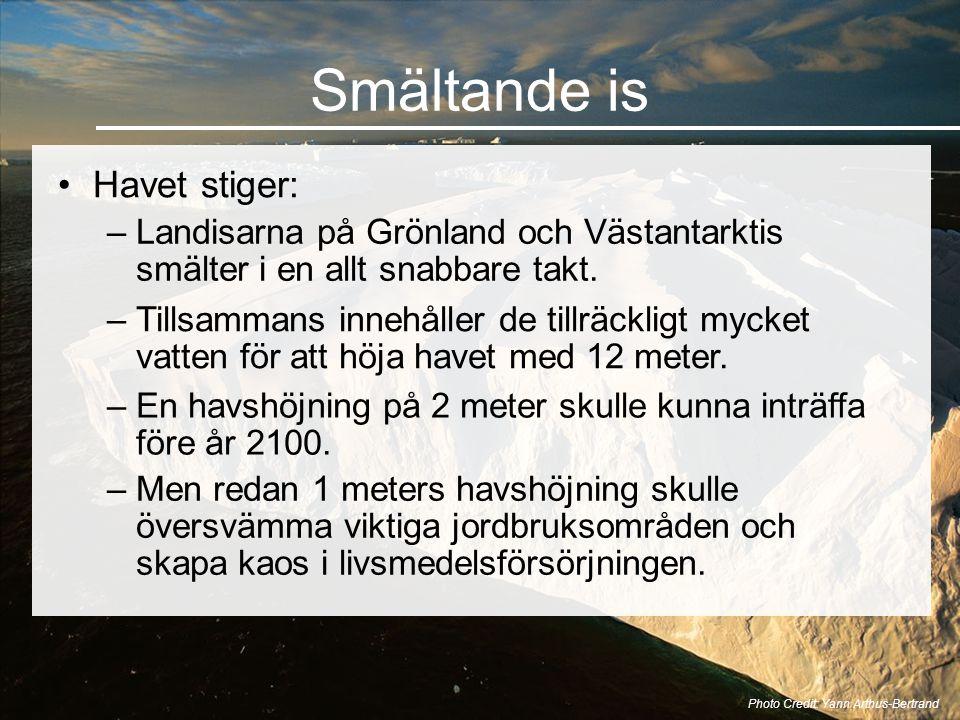 Smältande is •Havet stiger: Photo Credit: Yann Arthus-Bertrand –Landisarna på Grönland och Västantarktis smälter i en allt snabbare takt. –Tillsammans