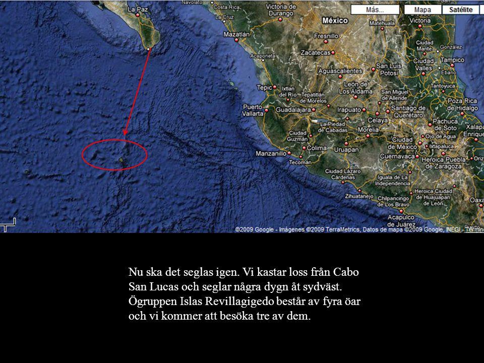 Nu ska det seglas igen.Vi kastar loss från Cabo San Lucas och seglar några dygn åt sydväst.