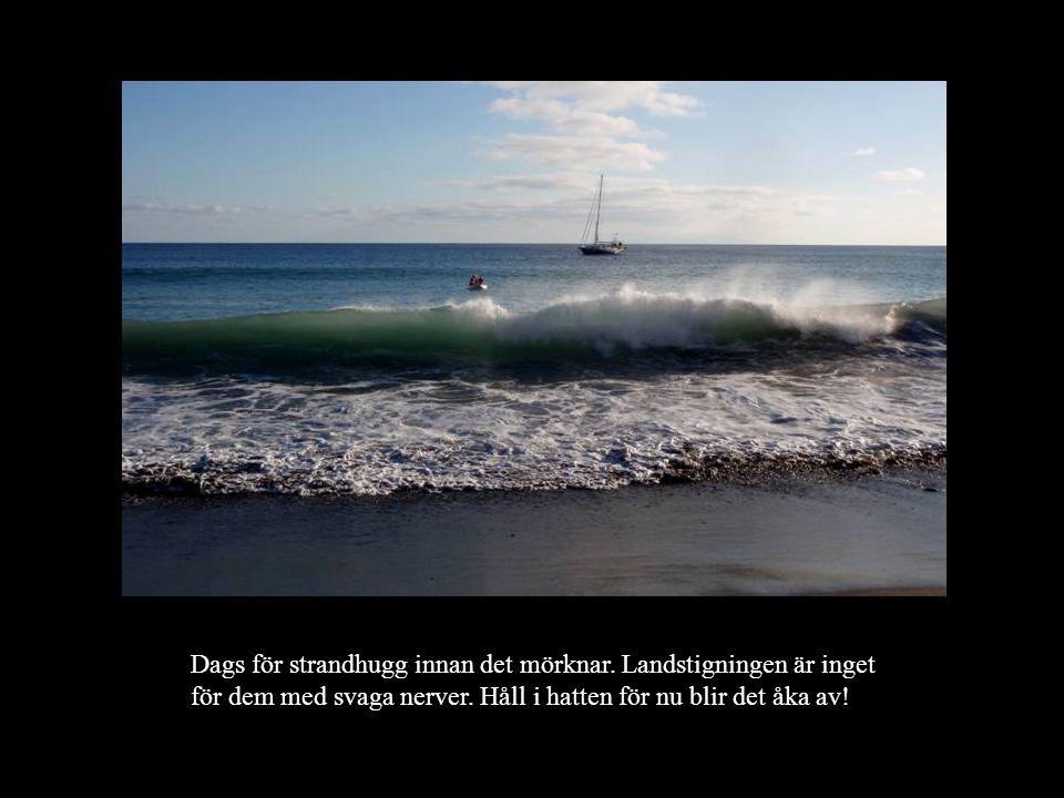 Dags för strandhugg innan det mörknar.Landstigningen är inget för dem med svaga nerver.