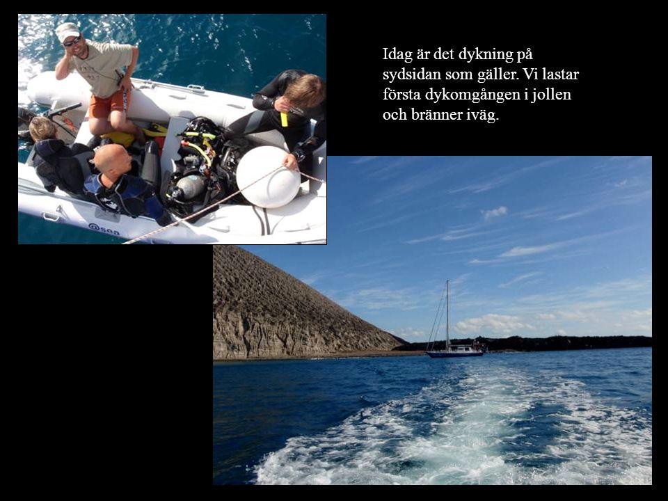 Idag är det dykning på sydsidan som gäller. Vi lastar första dykomgången i jollen och bränner iväg.