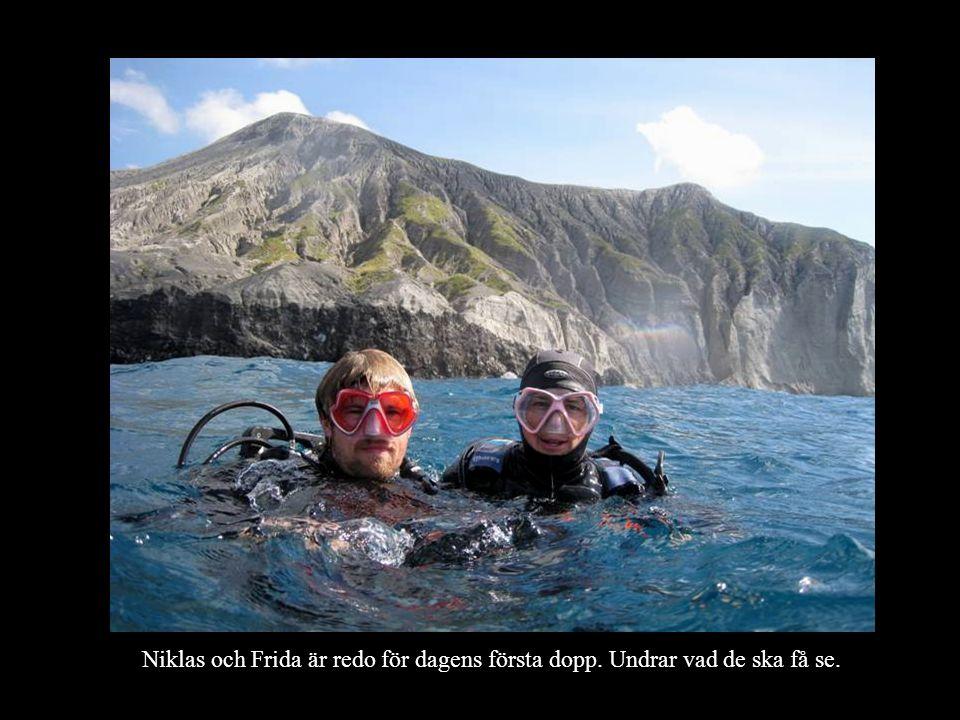 Niklas och Frida är redo för dagens första dopp. Undrar vad de ska få se.