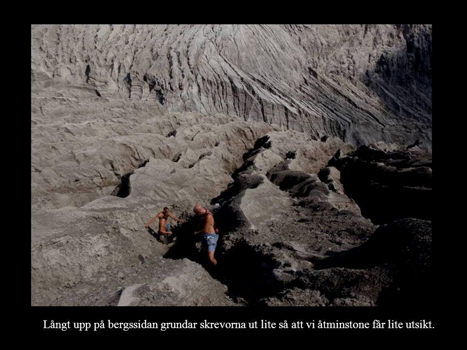 Långt upp på bergssidan grundar skrevorna ut lite så att vi åtminstone får lite utsikt.