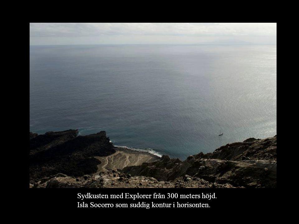 Sydkusten med Explorer från 300 meters höjd. Isla Socorro som suddig kontur i horisonten.