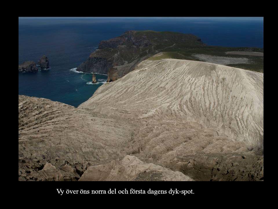 Vy över öns norra del och första dagens dyk-spot.