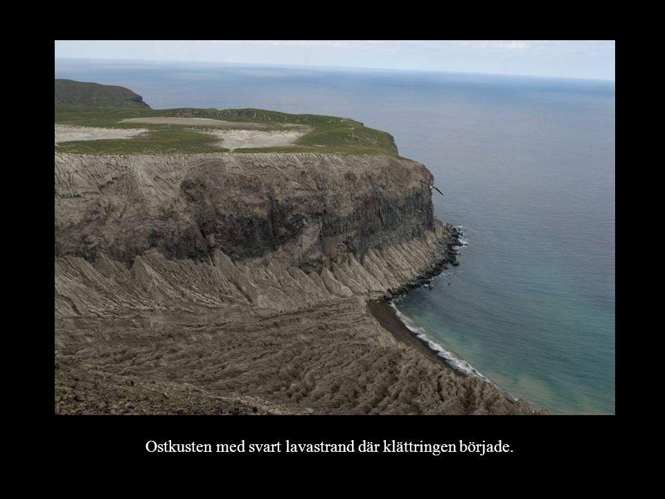 Ostkusten med svart lavastrand där klättringen började.