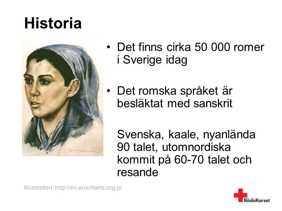 Historia •Det finns cirka 50 000 romer i Sverige idag •Det romska språket är besläktat med sanskrit Svenska, kaale, nyanlända 90 talet, utomnordiska k