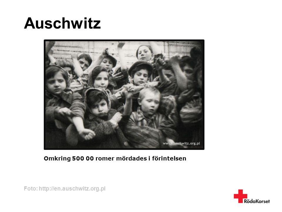 Auschwitz Omkring 500 00 romer mördades i förintelsen Foto: http://en.auschwitz.org.pl