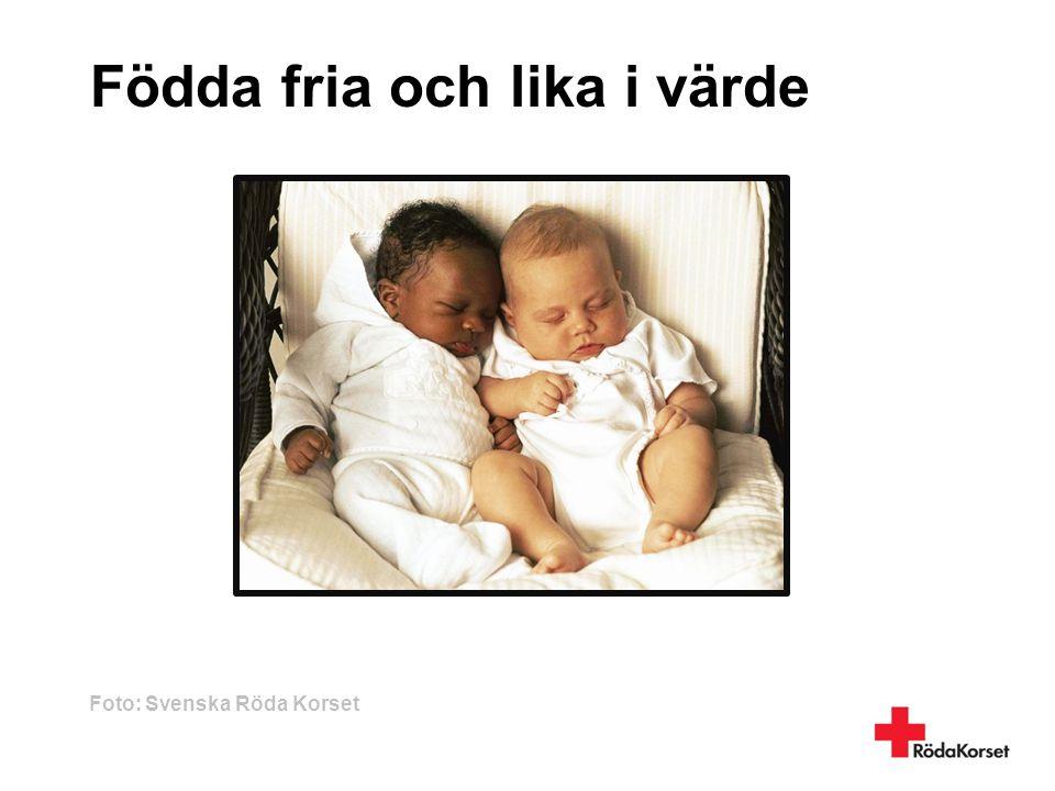Födda fria och lika i värde Foto: Svenska Röda Korset