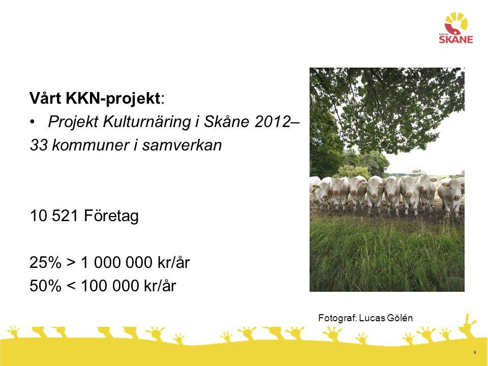 9 Vårt KKN-projekt: •Projekt Kulturnäring i Skåne 2012– 33 kommuner i samverkan 10 521 Företag 25% > 1 000 000 kr/år 50% < 100 000 kr/år Fotograf: Lucas Gölén