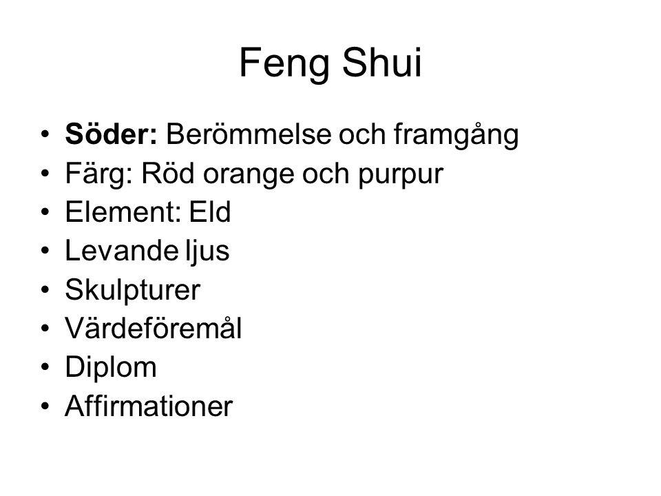Feng Shui •Söder: Berömmelse och framgång •Färg: Röd orange och purpur •Element: Eld •Levande ljus •Skulpturer •Värdeföremål •Diplom •Affirmationer