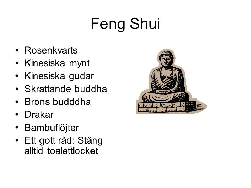 Feng Shui •Rosenkvarts •Kinesiska mynt •Kinesiska gudar •Skrattande buddha •Brons budddha •Drakar •Bambuflöjter •Ett gott råd: Stäng alltid toalettloc