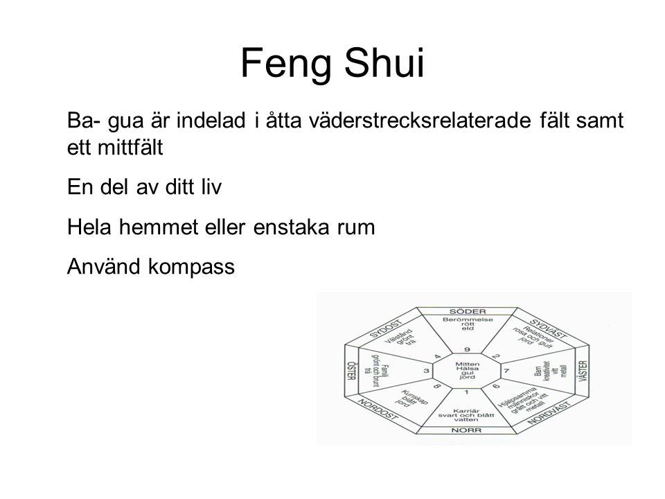 Feng Shui Ba- gua är indelad i åtta väderstrecksrelaterade fält samt ett mittfält En del av ditt liv Hela hemmet eller enstaka rum Använd kompass