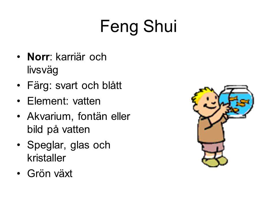 Feng Shui •Norr: karriär och livsväg •Färg: svart och blått •Element: vatten •Akvarium, fontän eller bild på vatten •Speglar, glas och kristaller •Grö