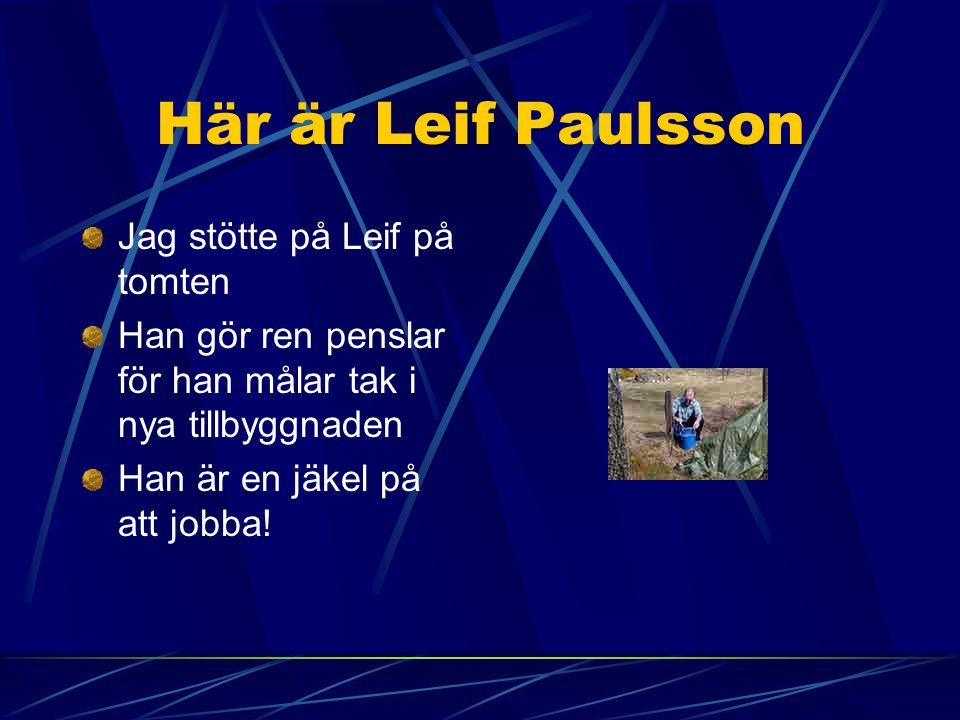 Här är Leif Paulsson Jag stötte på Leif på tomten Han gör ren penslar för han målar tak i nya tillbyggnaden Han är en jäkel på att jobba!