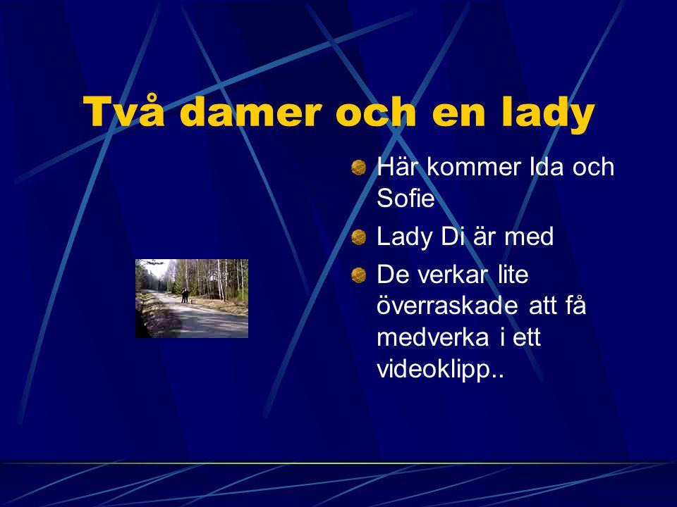 Två damer och en lady Här kommer Ida och Sofie Lady Di är med De verkar lite överraskade att få medverka i ett videoklipp..