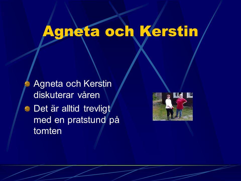 Agneta och Kerstin Agneta och Kerstin diskuterar våren Det är alltid trevligt med en pratstund på tomten