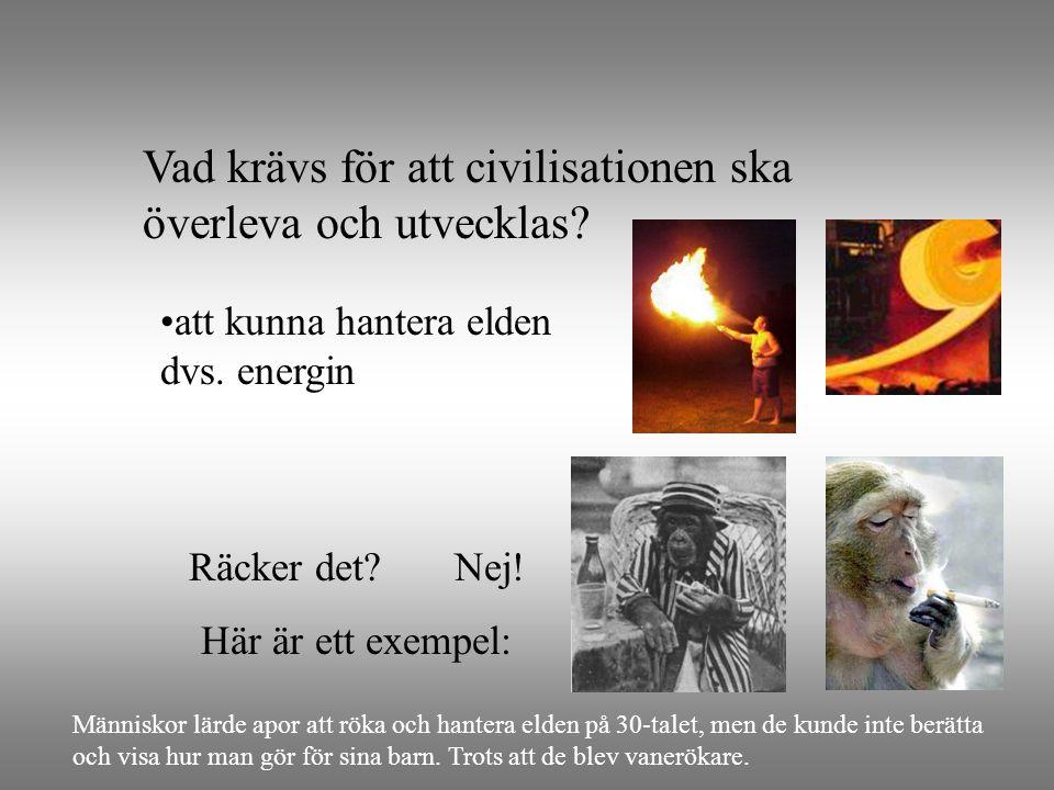 Vad krävs för att civilisationen ska överleva och utvecklas? •att kunna hantera elden dvs. energin Räcker det? Nej! Här är ett exempel: Människor lärd