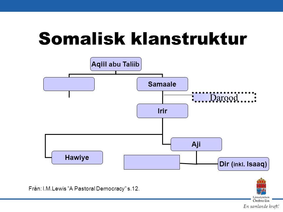 "En samlande kraft! Somalisk klanstruktur Från: I.M.Lewis ""A Pastoral Democracy"" s.12. Aqiil abu Taliib Samaale Irir Aji Hawiye Dir ( inkl. Isaaq) Daro"