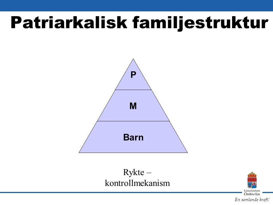 En samlande kraft! Patriarkalisk familjestruktur P M Barn Rykte – kontrollmekanism