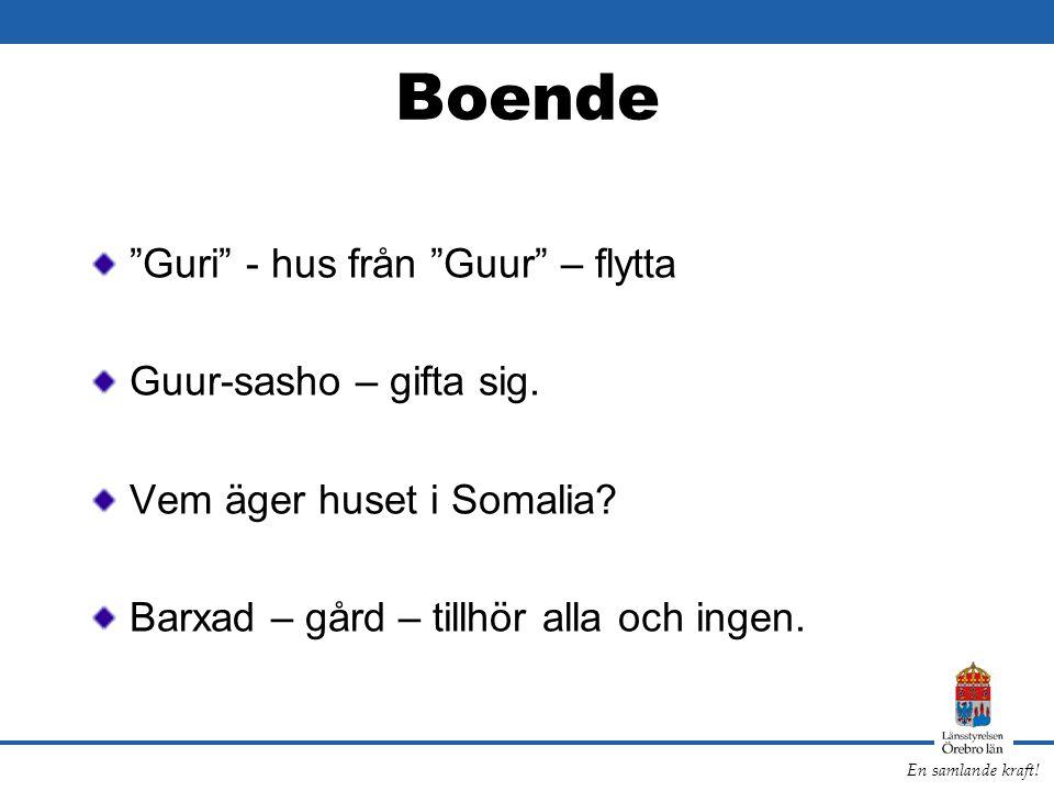 """En samlande kraft! Boende """"Guri"""" - hus från """"Guur"""" – flytta Guur-sasho – gifta sig. Vem äger huset i Somalia? Barxad – gård – tillhör alla och ingen."""