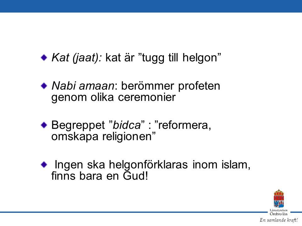 """En samlande kraft! Kat (jaat): kat är """"tugg till helgon"""" Nabi amaan: berömmer profeten genom olika ceremonier Begreppet """"bidca"""" : """"reformera, omskapa"""