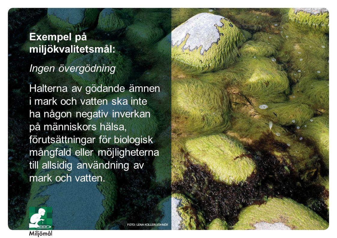 Exempel på miljökvalitetsmål: Ingen övergödning Halterna av gödande ämnen i mark och vatten ska inte ha någon negativ inverkan på människors hälsa, fö