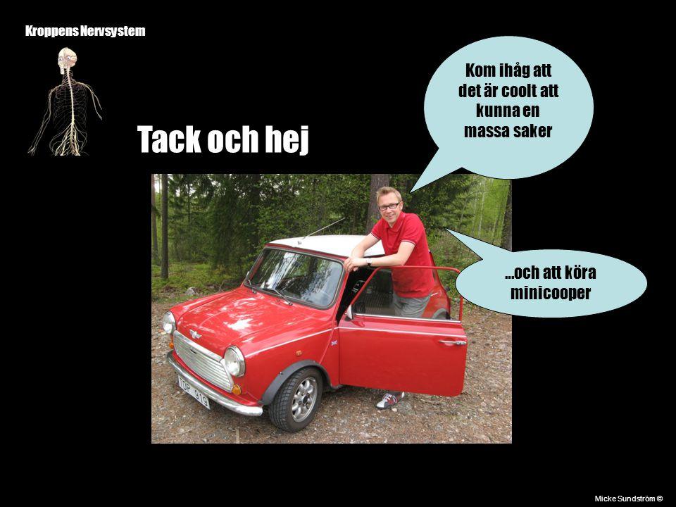 Kroppens Nervsystem Micke Sundström © Tack och hej Kom ihåg att det är coolt att kunna en massa saker …och att köra minicooper