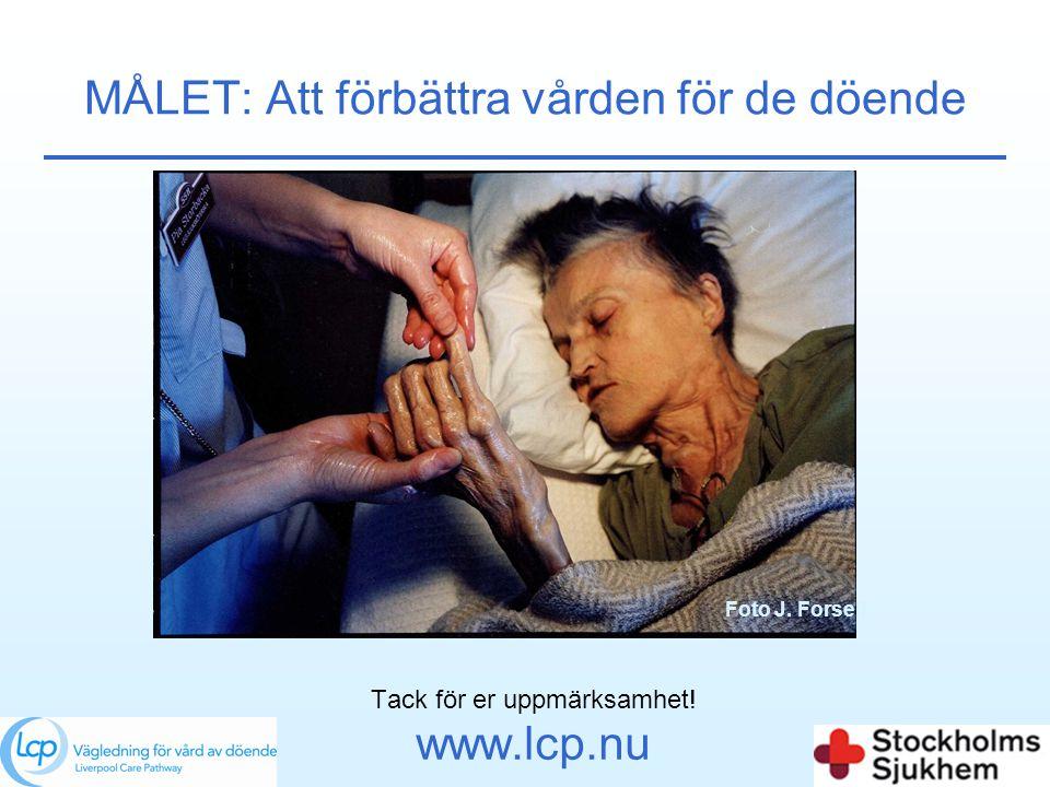 MÅLET: Att förbättra vården för de döende Tack för er uppmärksamhet! www.lcp.nu Foto J. Forsell