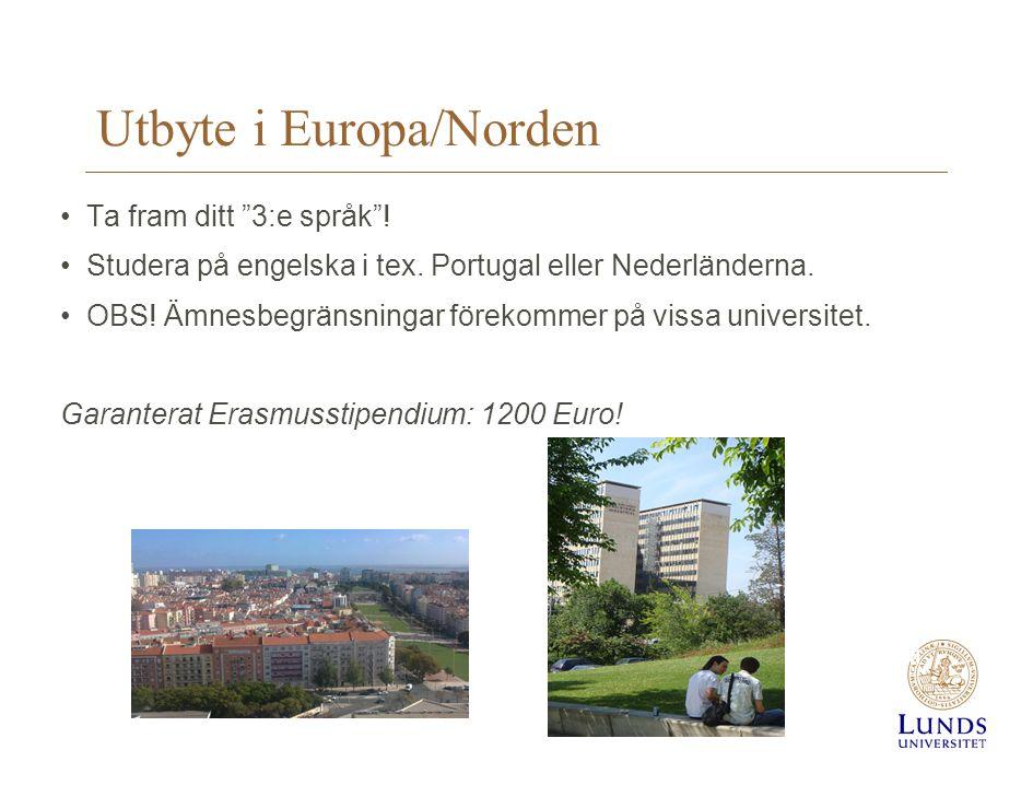 """Utbyte i Europa/Norden •Ta fram ditt """"3:e språk""""! •Studera på engelska i tex. Portugal eller Nederländerna. •OBS! Ämnesbegränsningar förekommer på vis"""