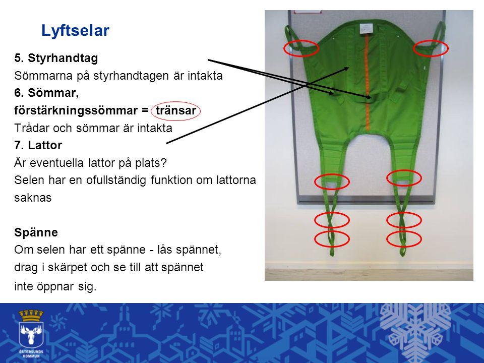Lyftselar 5. Styrhandtag Sömmarna på styrhandtagen är intakta 6. Sömmar, förstärkningssömmar = tränsar Trådar och sömmar är intakta 7. Lattor Är event