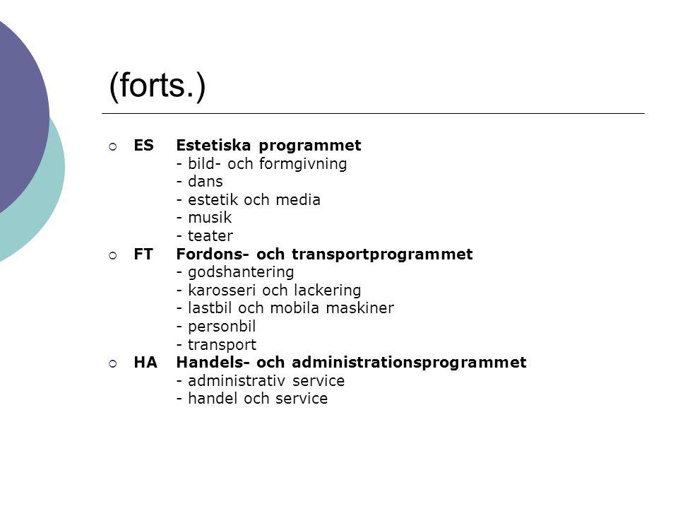 (forts.)  ES Estetiska programmet - bild- och formgivning - dans - estetik och media - musik - teater  FT Fordons- och transportprogrammet - godshan