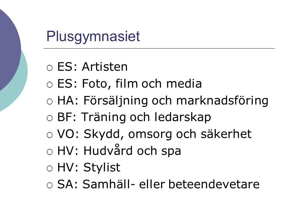 Plusgymnasiet  ES: Artisten  ES: Foto, film och media  HA: Försäljning och marknadsföring  BF: Träning och ledarskap  VO: Skydd, omsorg och säker