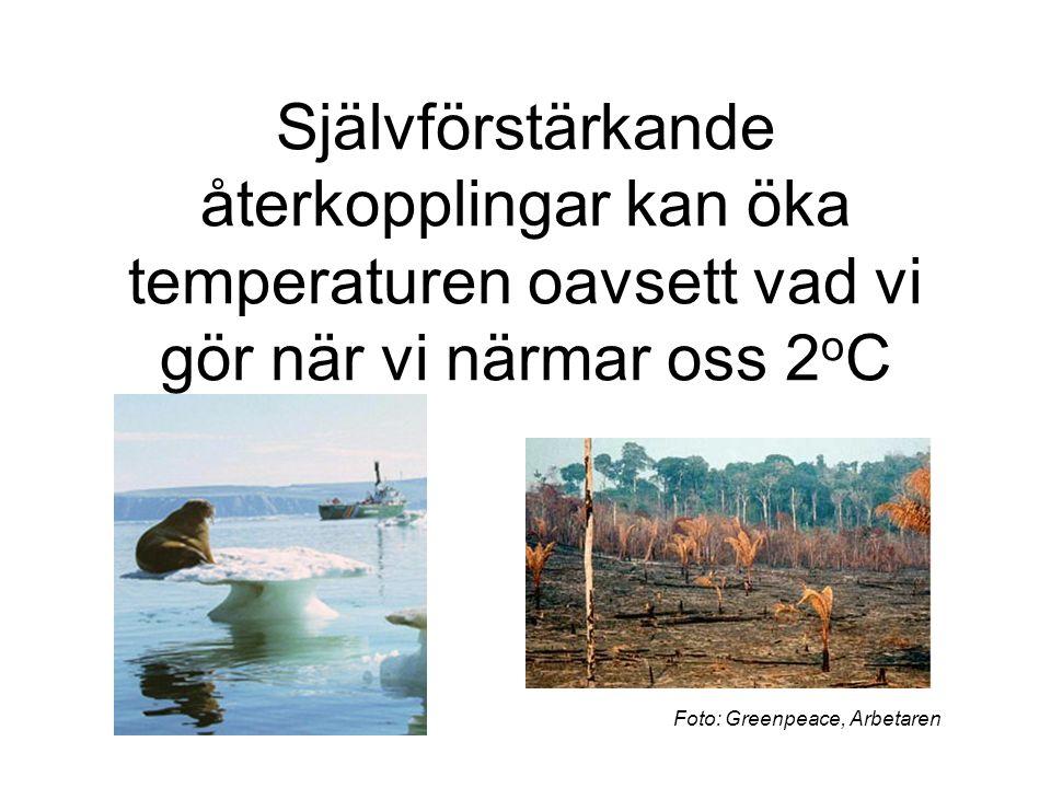 Självförstärkande återkopplingar kan öka temperaturen oavsett vad vi gör när vi närmar oss 2 o C Foto: Greenpeace, Arbetaren
