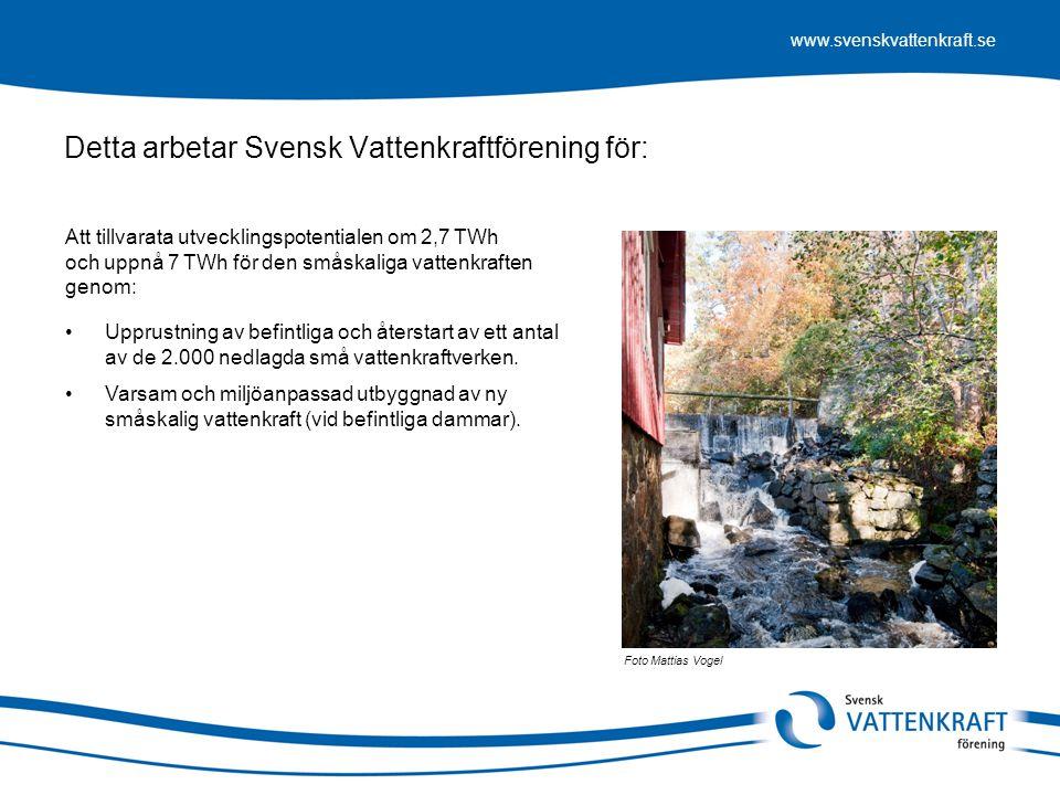 www.svenskvattenkraft.se Detta arbetar Svensk Vattenkraftförening för: Foto Mattias Vogel •Upprustning av befintliga och återstart av ett antal av de