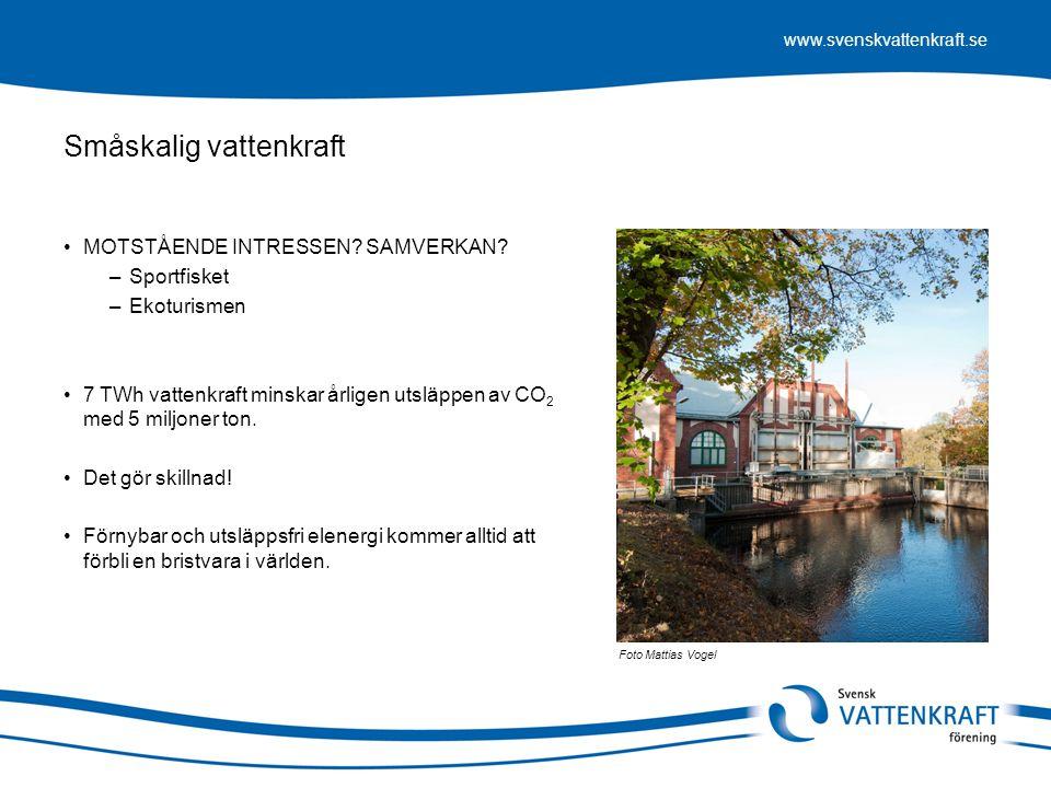 www.svenskvattenkraft.se Småskalig vattenkraft •MOTSTÅENDE INTRESSEN? SAMVERKAN? –Sportfisket –Ekoturismen •7 TWh vattenkraft minskar årligen utsläppe