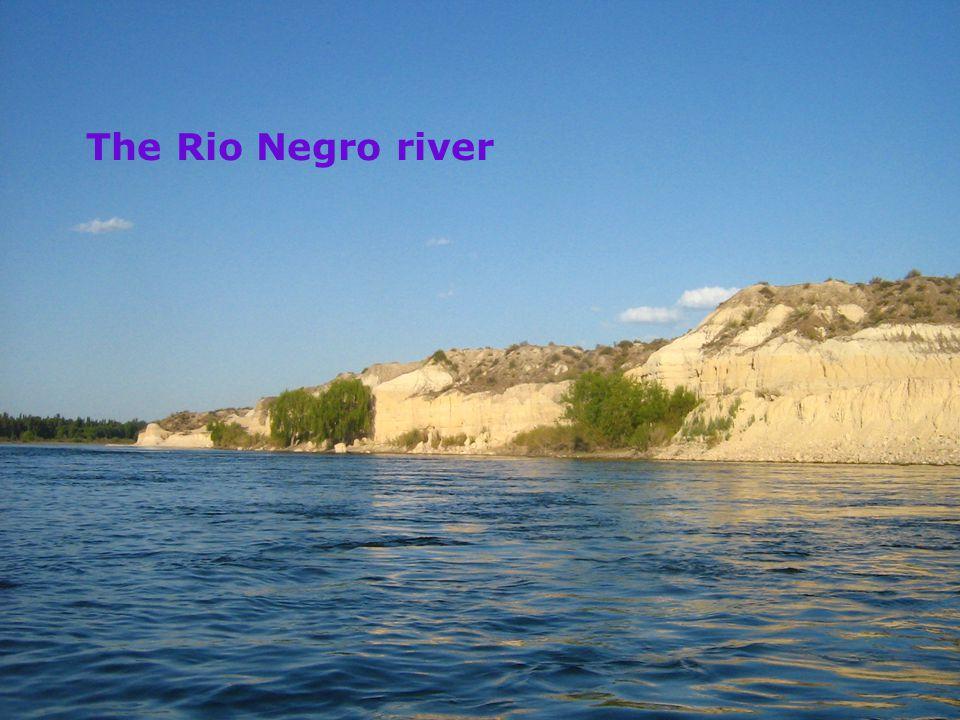 buv.su.se/ Ingrid Engdahl, Dep of Child and Youth Studies The Rio Negro river