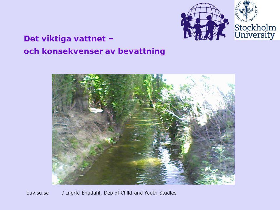 buv.su.se/ Ingrid Engdahl, Dep of Child and Youth Studies Det viktiga vattnet – och konsekvenser av bevattning