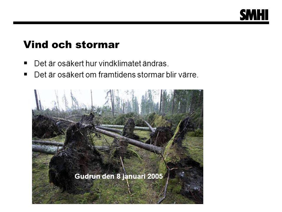 Vind och stormar  Det är osäkert hur vindklimatet ändras.
