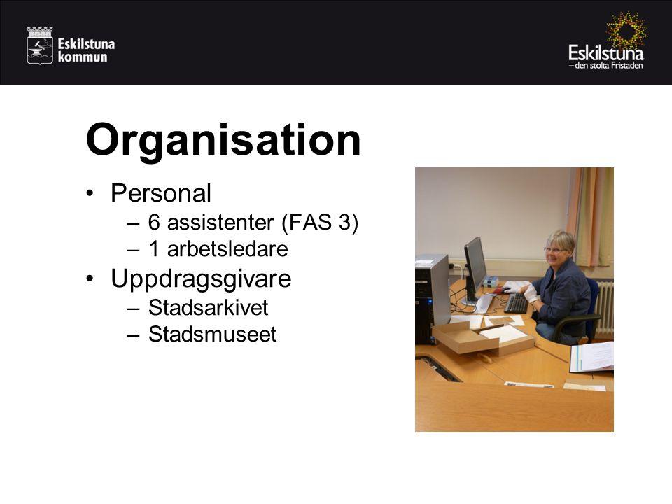 •Personal –6 assistenter (FAS 3) –1 arbetsledare •Uppdragsgivare –Stadsarkivet –Stadsmuseet Organisation