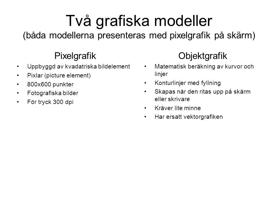 Två grafiska modeller (båda modellerna presenteras med pixelgrafik på skärm) Pixelgrafik •Uppbyggd av kvadatriska bildelement •Pixlar (picture element