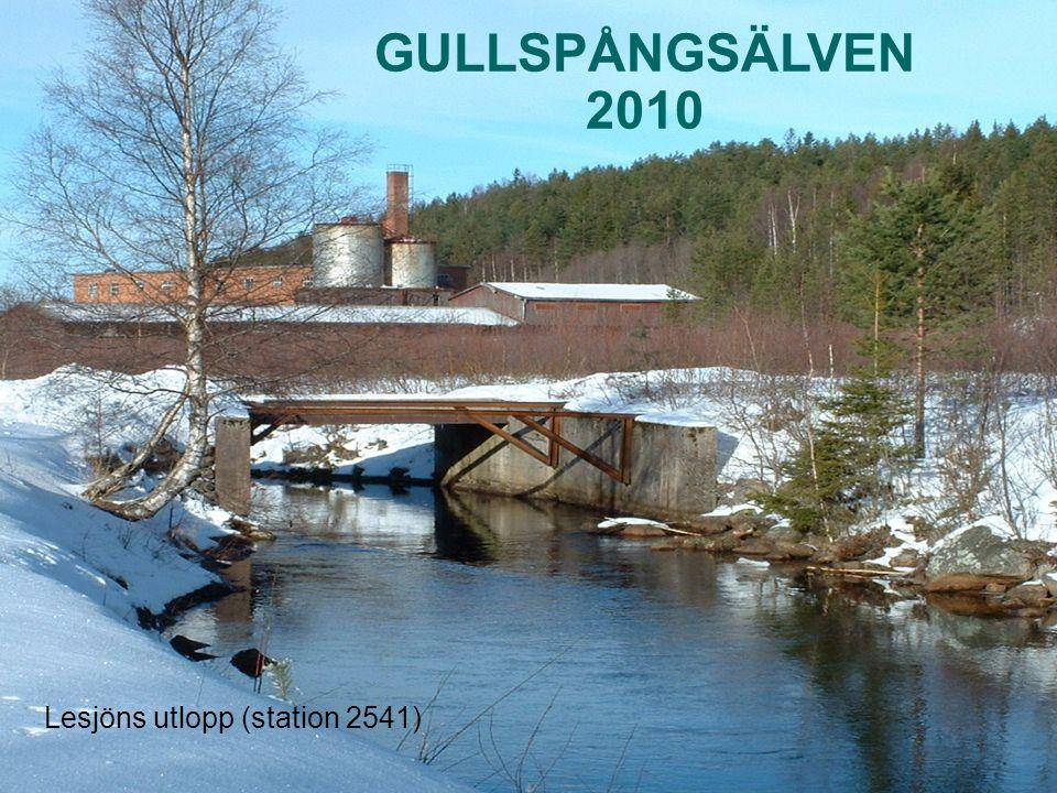 Ordinarie vattenkemi 17 stationer i vattendrag 10 stationer i sjöar Bottenfauna 5 lokaler i vattendrag Undersökningarna 2010