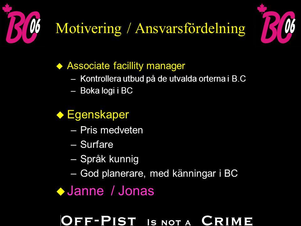 Motivering / Ansvarsfördelning u Egenskaper –Köpvillig –Layout kunnig u Janne u Gifts shop clerk –Ta fram marknadsmaterial