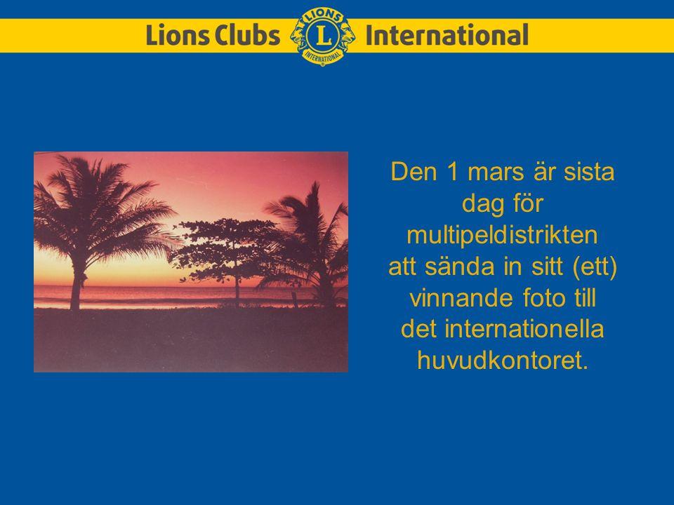 Den 1 mars är sista dag för multipeldistrikten att sända in sitt (ett) vinnande foto till det internationella huvudkontoret.