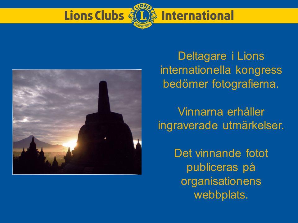 Deltagare i Lions internationella kongress bedömer fotografierna.