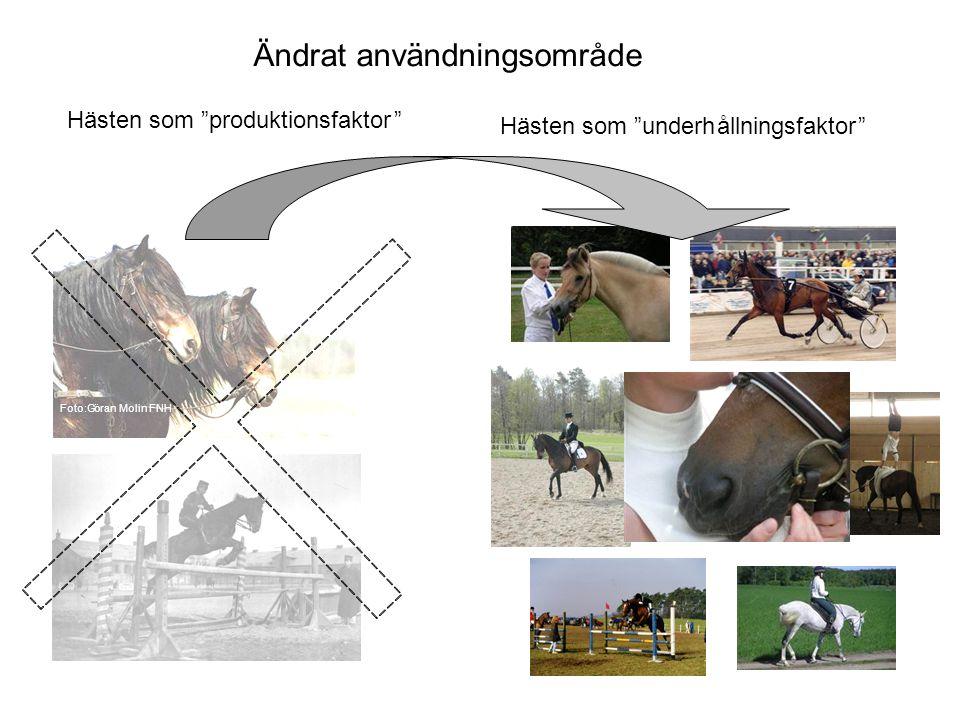 Konsekvenser Nationell och internationell statistik beskriver en verklighet som inte längre finns •1970 ansågs det att vi hade 60 000 hästar i Sverige men vi hade nog 115 000 •Enl.